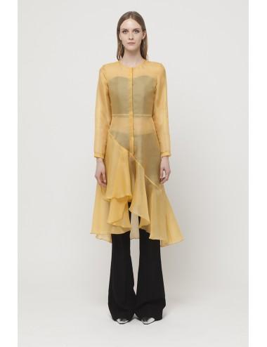 Transparent dress with ruffles